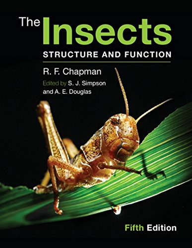 9781107624801: The Insects Structure And Function 5th Ed