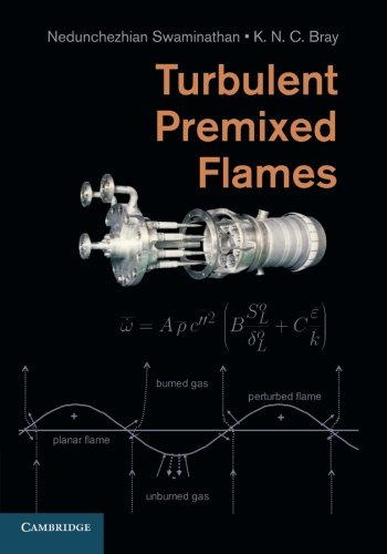 9781107679061: Turbulent Premixed Flames