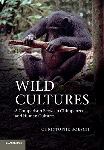 9781107689152: Wild Cultures: A Comparison between Chimpanzee and Human Cultures