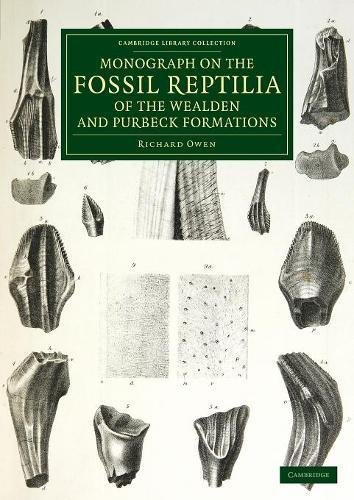 9781108081139: Monograph on the Fossil Reptilia of the Wealden and Purbeck Formations (Cambridge Library Collection - Monographs of the Palaeontographical Society)