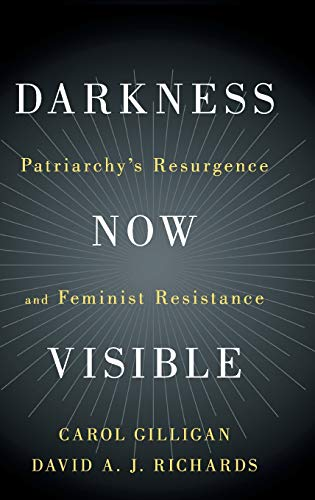 9781108470650: Darkness Now Visible: Patriarchy's Resurgence and Feminist Resistance
