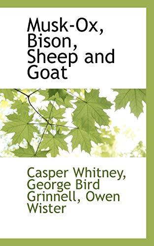 Musk-Ox, Bison, Sheep and Goat: George Bird Grinnell Owen Wi Whitney