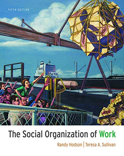 9781111300951: The Social Organization of Work