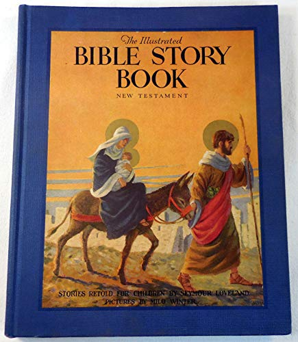 9781111315795: The illustrated Bible story book;
