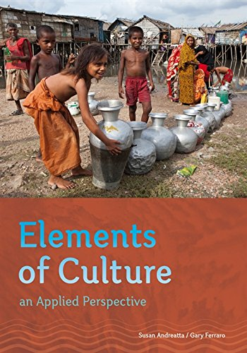 Elements Of Culture: An Applied Perspective (Paperback): Gary P. Ferraro,