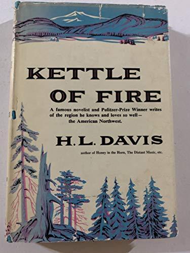 9781117036878: Kettle of fire.