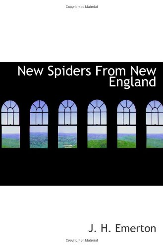9781117789866: New Spiders From New England