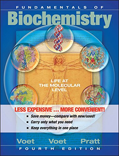 Fundamentals of Biochemistry: Life at the Molecular: Voet, Donald, Voet,