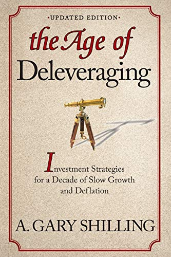 9781118150184: The Age of Deleveraging: Investment Strategies for a Decade of Slow Growth and Deflation