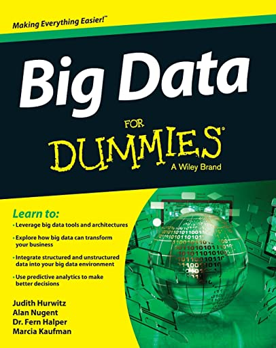 9781118504222: Big Data For Dummies
