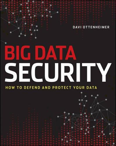 9781118559215: The Realities of Securing Big Data