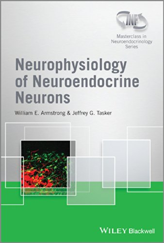 Neurophysiology of Neuroendocrine Neurons (Wiley-INF Neuroendocrinology Series): Armstrong, William...