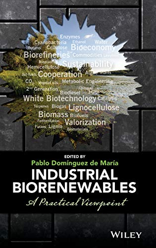 9781118843727: Industrial Biorenewables: A Practical Viewpoint
