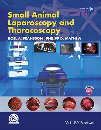 9781118845967: Small Animal Laparoscopy and Thoracoscopy (AVS Advances in Veterinary Surgery)