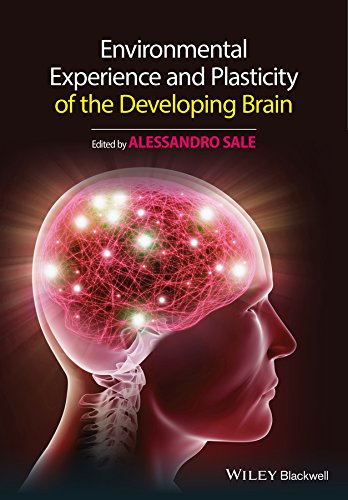 9781118931653: Environmental Experience and Plasticity of the Developing Brain