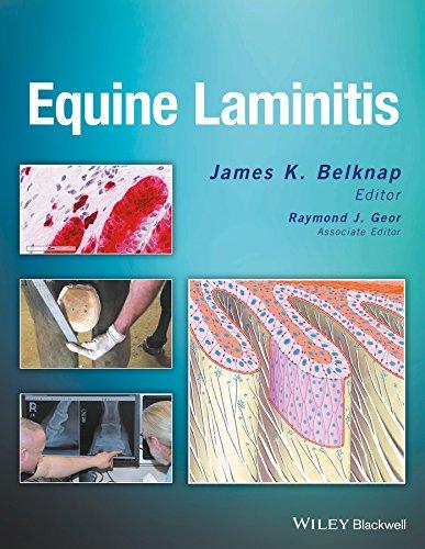 9781119944713: Equine Laminitis