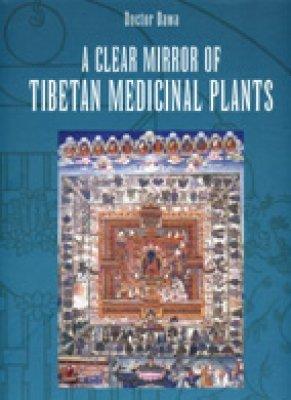 9781122692328: A Clear Mirror of Tibetan Medicinal Plants: Volume 1