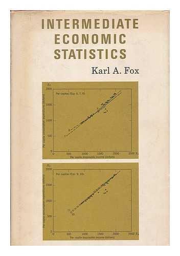 9781124024486: Intermediate Economic Statistics