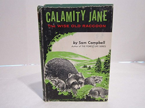 9781131127989: Calamity Jane: The wise old raccoon
