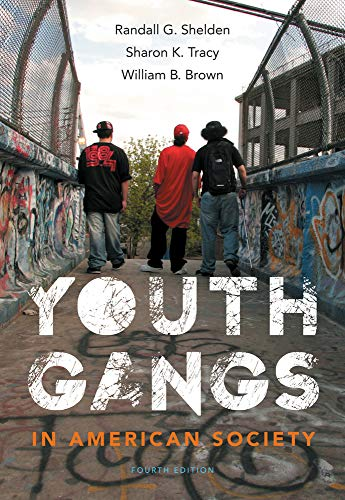 9781133049562: Youth Gangs in American Society