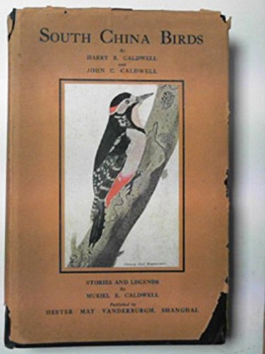 9781135443139: South China birds