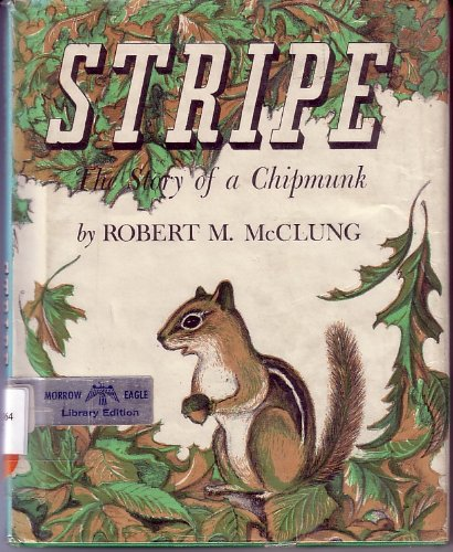 9781135835064: Stripe, The Story of a Chipmunk