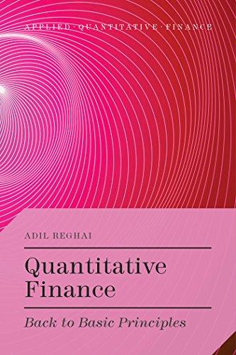 9781137414496: Quantitative Finance: Back to Basic Principles