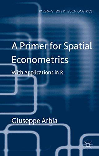 9781137428165: A Primer for Spatial Econometrics (Palgrave Texts in Econometrics)