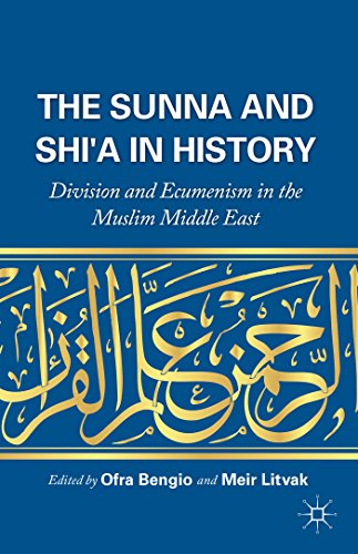 9781137485588: The Sunna and Shi'a in History: Division and Ecumenism in the Muslim Middle East