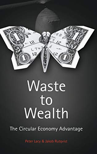 9781137530684: Waste to Wealth: The Circular Economy Advantage