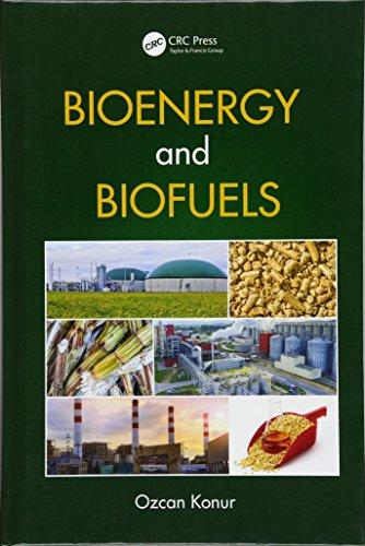 9781138032811: Bioenergy and Biofuels