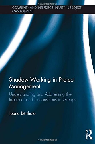 Shadow Working In Project Management: Bertholo, Joana