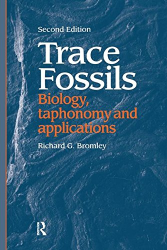 Trace Fossils: Biology, Taxonomy and Applications: BROMLEY, RICHARD G.