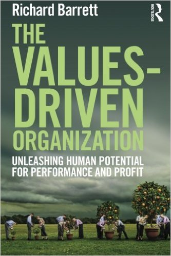 9781138679047: Values Driven Organization: Unleashing Human Potential For Performance And Profit