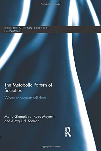 9781138802926: The Metabolic Pattern of Societies: Where Economists Fall Short (Routledge Studies in Ecological Economics)