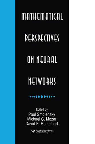 9781138876293: Mathematical Perspectives on Neural Networks