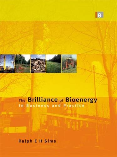 9781138988842: The Brilliance of Bioenergy: In Business and In Practice