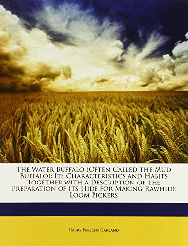 9781146496834: The Water Buffalo (Often Called the Mud Buffalo): Its Characteristics and Habits Together with a Description of the Preparation of Its Hide for Making Rawhide Loom Pickers