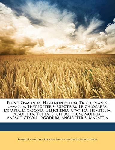 9781147013597: Ferns: Osmunda, Hymenophyllum, Trichomanes, Davallia, Thyrsopteris, Cibotium, Trichiocarpa, Deparia, Dicksonia, Gleichenia, Cyathea, Hemitelia, ... Anemidictyon, Lygodium, Angiopteris, Marattia
