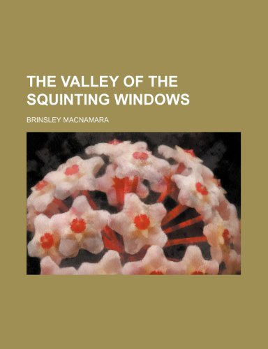 9781150764110: The Valley of the Squinting Windows