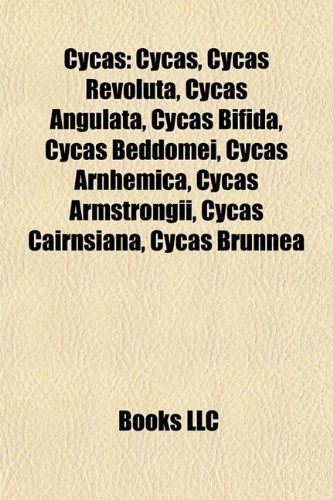 9781155617275: Cycas: Cycas Revoluta, Cycas Angulata, Cycas Bifida, Cycas Beddomei, Cycas Arnhemica, Cycas Armstrongii, Cycas Cairnsiana, Cycas Brunnea