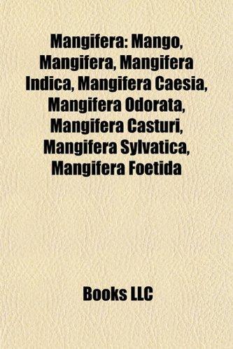 9781155888156: Mangifera: Mango, Mangifera Indica, Mangifera Caesia, Mangifera Odorata, Mangifera Casturi, Mangifera Sylvatica, Mangifera Foetida