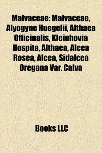9781156526309: Malvaceae: Bombacoideae, Brownlowioideae, Byttnerioideae, Dombeyoideae, Grewioideae, Helicteroideae, Malvoideae, Sterculioideae,