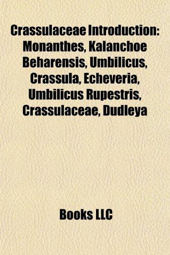 9781157237327: Crassulaceae Introduction: Monanthes, Crassula, Umbilicus, Echeveria, Tylecodon, Cotyledon, Dudleya stolonifera, Crassulaceae