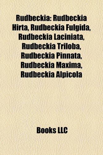 9781157295334: Rudbeckia
