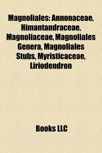 9781157873341: Magnoliales: Annonaceae, Himantandraceae, Magnoliaceae, Magnoliales genera, Magnoliales stubs, Myristicaceae, Liriodendron
