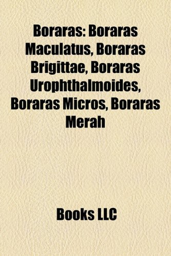 9781158293186: Boraras: Boraras Maculatus, Boraras Brigittae, Boraras Urophthalmoides, Boraras Micros, Boraras Merah