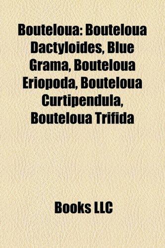9781158303991: Bouteloua: Bouteloua Dactyloides, Blue Grama, Bouteloua Eriopoda, Bouteloua Curtipendula, Bouteloua Trifida