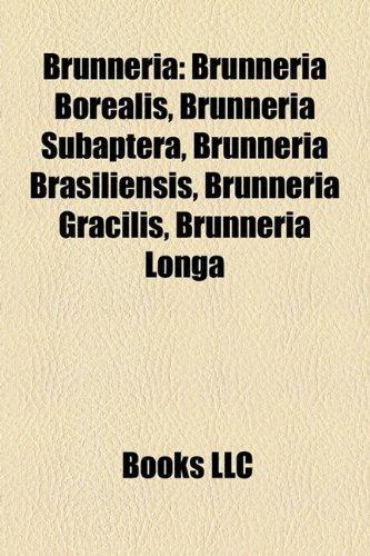 9781158642717: Brunneria: Brunneria Borealis, Brunneria Subaptera, Brunneria Brasiliensis, Brunneria Gracilis, Brunneria Longa