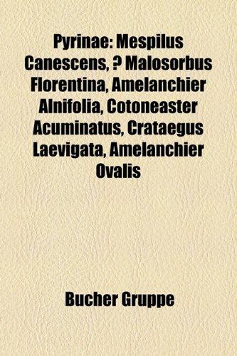9781159278717: Pyrinae: Mespilus canescens, × Malosorbus florentina, Amelanchier alnifolia, Cotoneaster acuminatus, Crataegus laevigata, Amelanchier ovalis